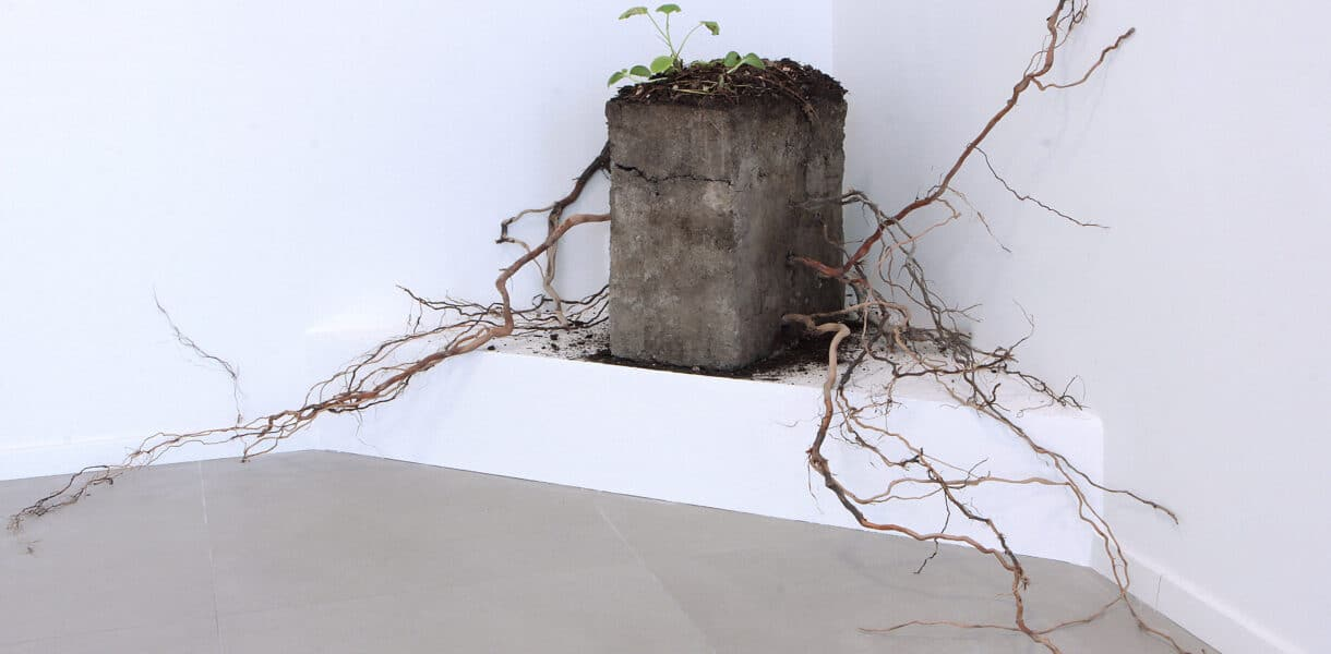 Viva, 2019 | sculpture - francescoditillo.com
