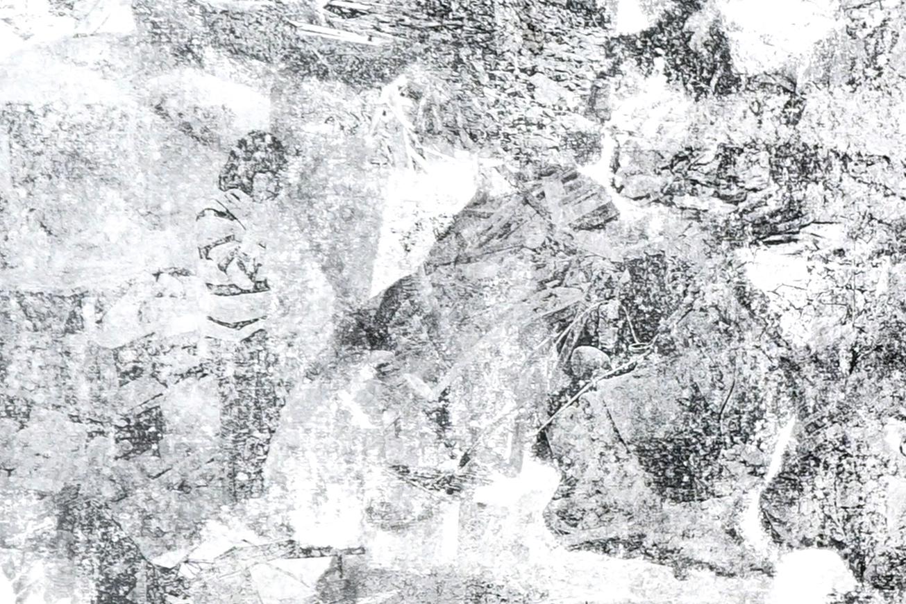 climate horizon #004 - detail 1